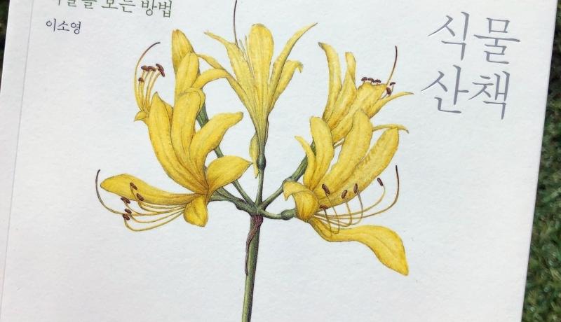 [BOOK] 식물 산책